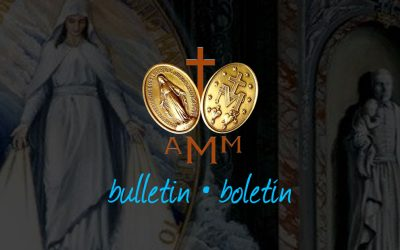 AMM Bulletin #50 (Symposium 2017)