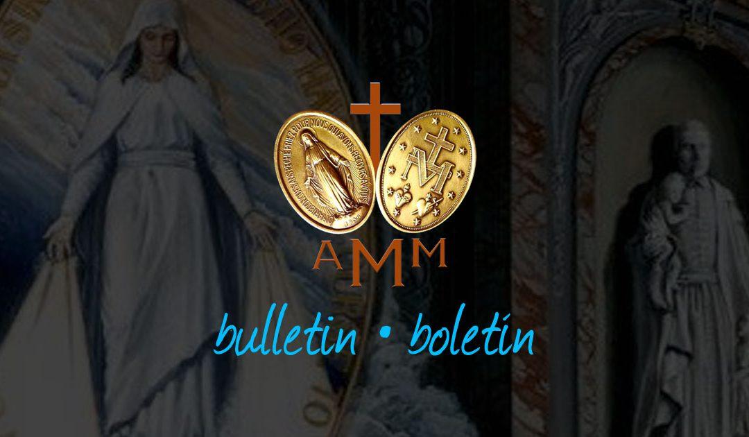 AMM Boletím No 55